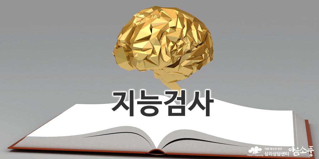 웩슬러지능검사_심리용어사전_심리상담센터마음소풍.PNG